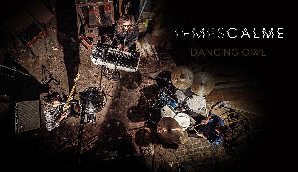 """Temps Calme dévoile la session captivante de """"Dancing Owl"""" - Mazik"""